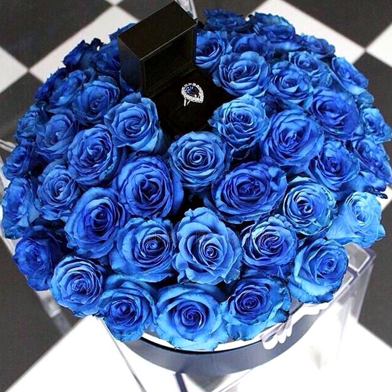 Ты подарил мне букет синих роз